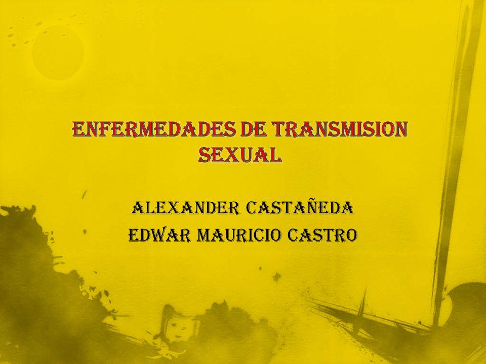 ALEXANDER CASTAÑEDA EDWAR MAURICIO CASTRO