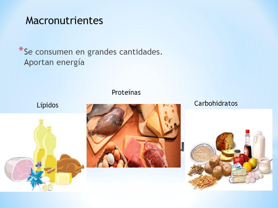 * Se consumen en grandes cantidades. Aportan energía Carbohidratos Proteínas Lípidos Macronutrientes
