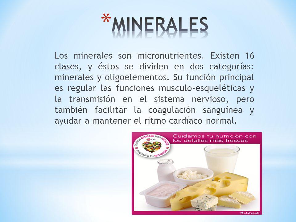 Los minerales son micronutrientes. Existen 16 clases, y éstos se dividen en dos categorías: minerales y oligoelementos. Su función principal es regula