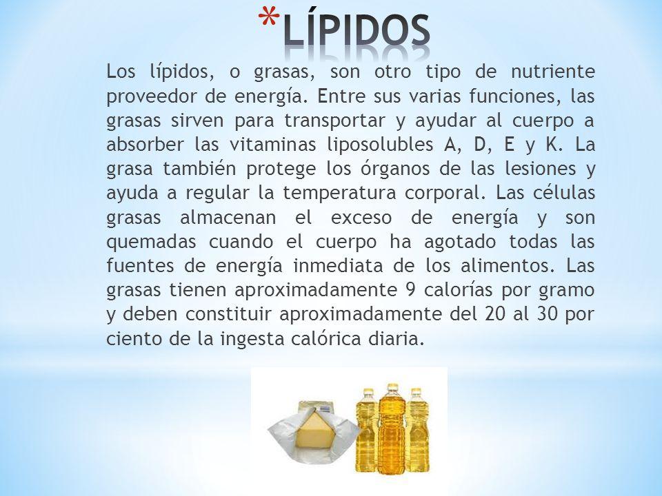 Los lípidos, o grasas, son otro tipo de nutriente proveedor de energía. Entre sus varias funciones, las grasas sirven para transportar y ayudar al cue