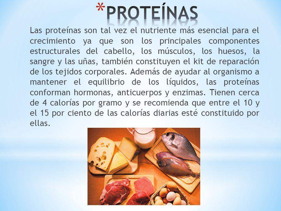 Las proteínas son tal vez el nutriente más esencial para el crecimiento ya que son los principales componentes estructurales del cabello, los músculos
