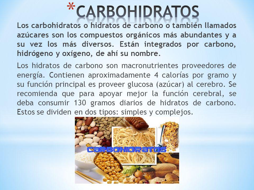 Los carbohidratos o hidratos de carbono o también llamados azúcares son los compuestos orgánicos más abundantes y a su vez los más diversos. Están int