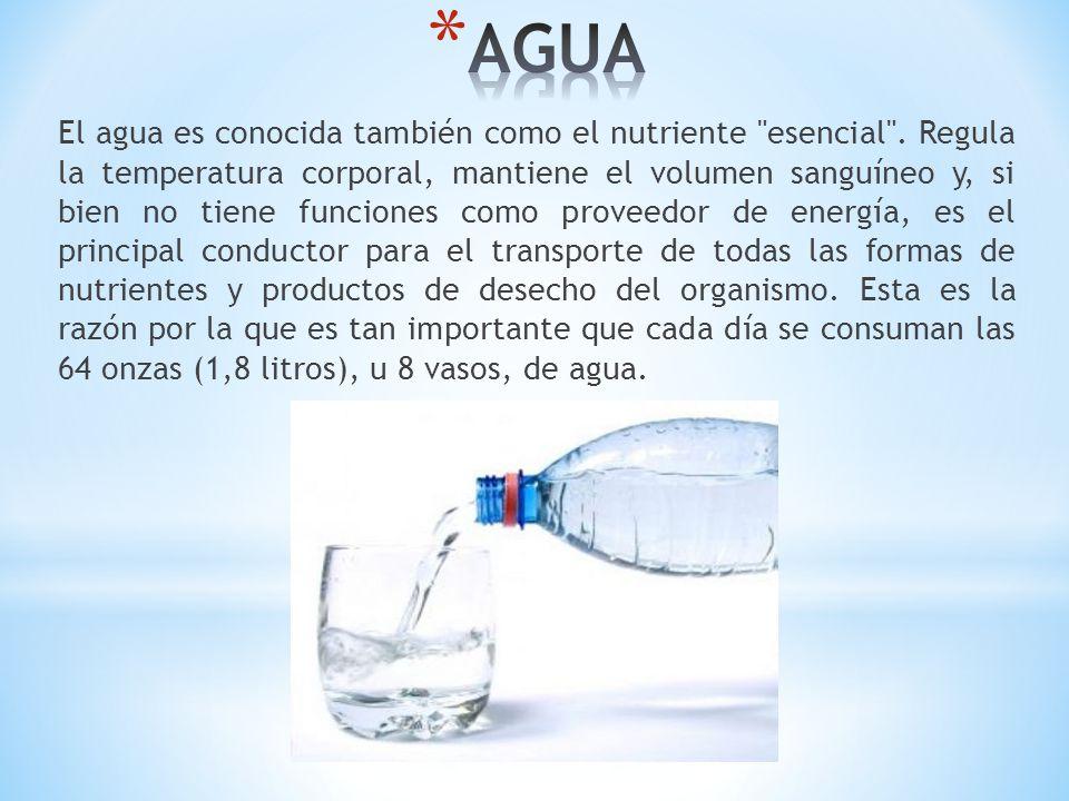 El agua es conocida también como el nutriente