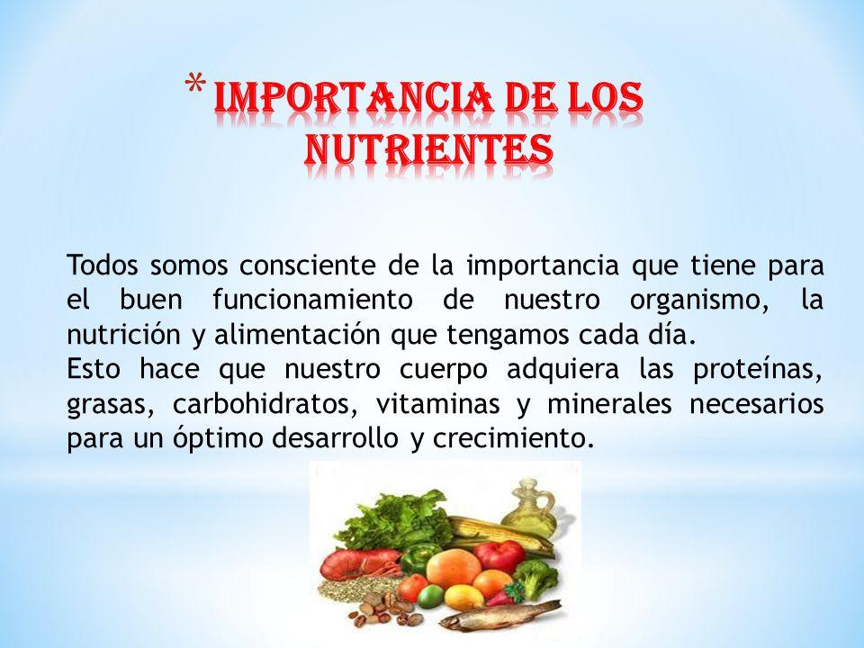 Todos somos consciente de la importancia que tiene para el buen funcionamiento de nuestro organismo, la nutrición y alimentación que tengamos cada día
