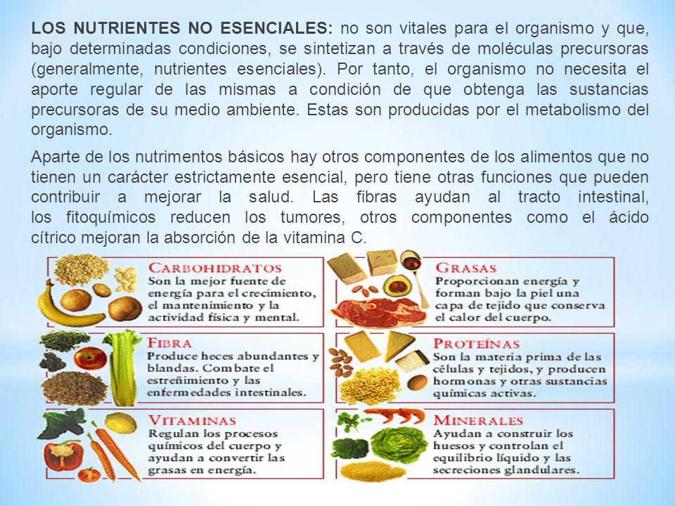 LOS NUTRIENTES NO ESENCIALES: no son vitales para el organismo y que, bajo determinadas condiciones, se sintetizan a través de moléculas precursoras (