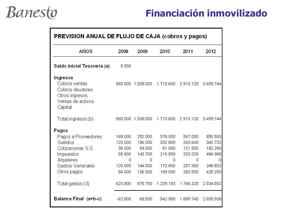 Financiación inmovilizado