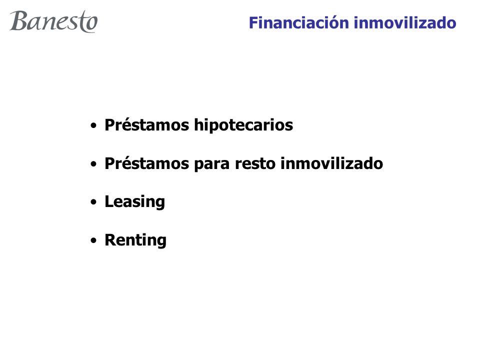 Préstamos hipotecarios Préstamos para resto inmovilizado Leasing Renting
