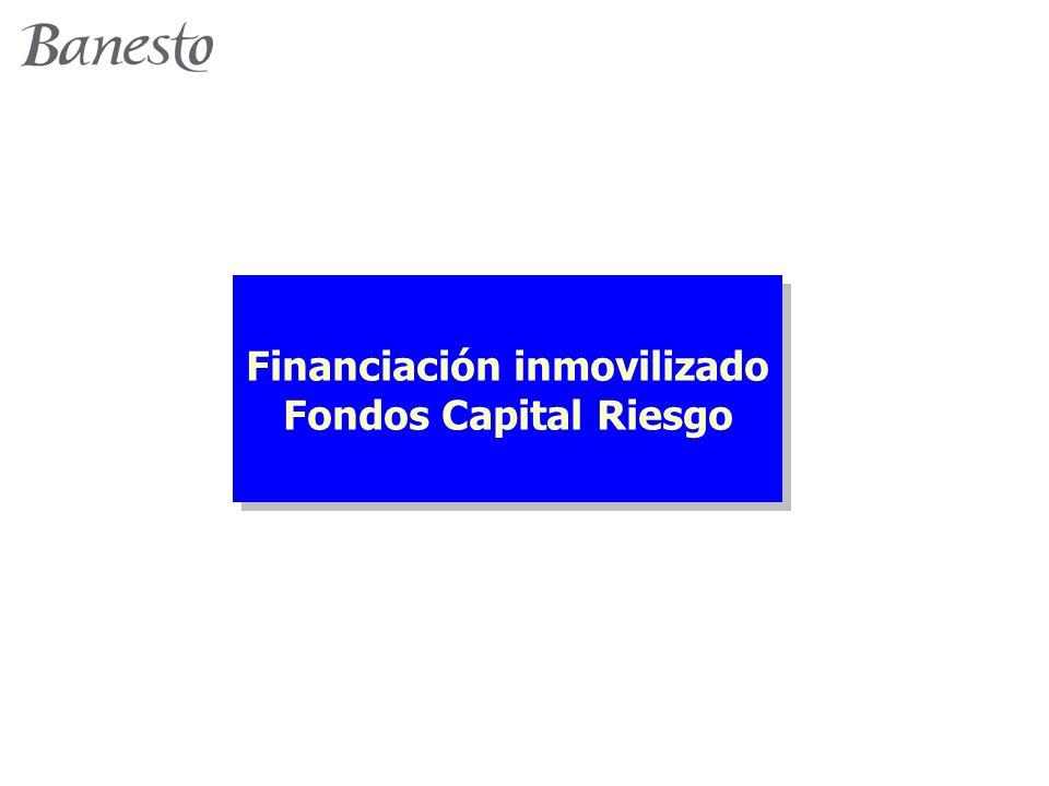 Financiación inmovilizado Fondos Capital Riesgo Financiación inmovilizado Fondos Capital Riesgo
