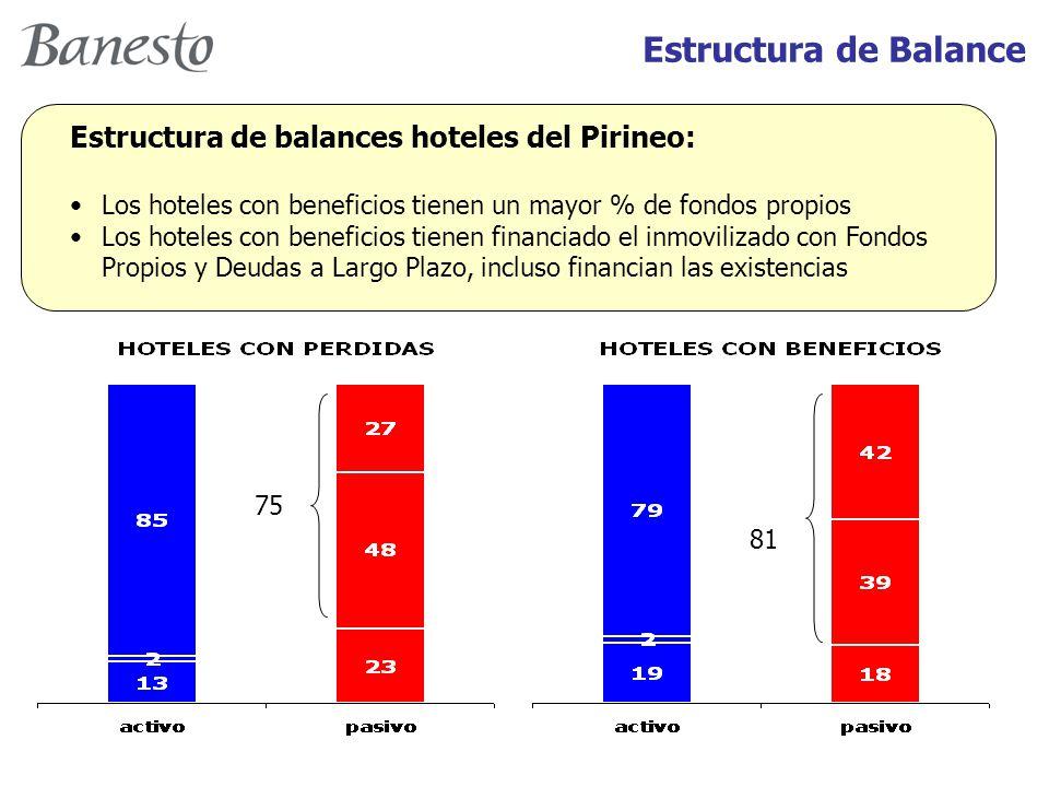 Estructura de balances hoteles del Pirineo: Los hoteles con beneficios tienen un mayor % de fondos propios Los hoteles con beneficios tienen financiado el inmovilizado con Fondos Propios y Deudas a Largo Plazo, incluso financian las existencias 75 81 Estructura de Balance