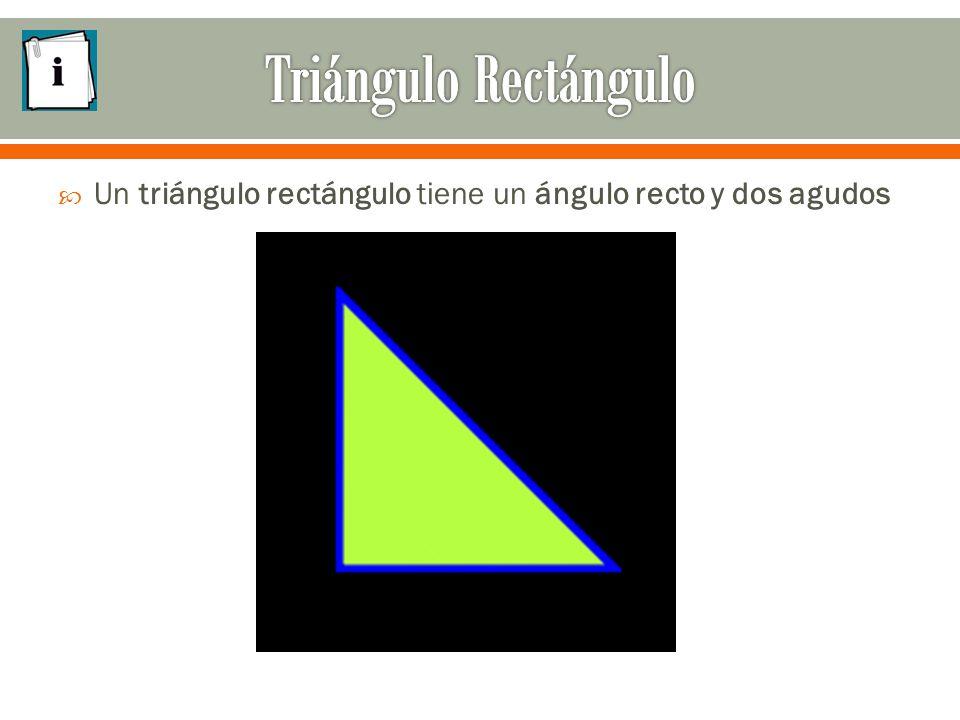  Un triángulo rectángulo tiene un ángulo recto y dos agudos