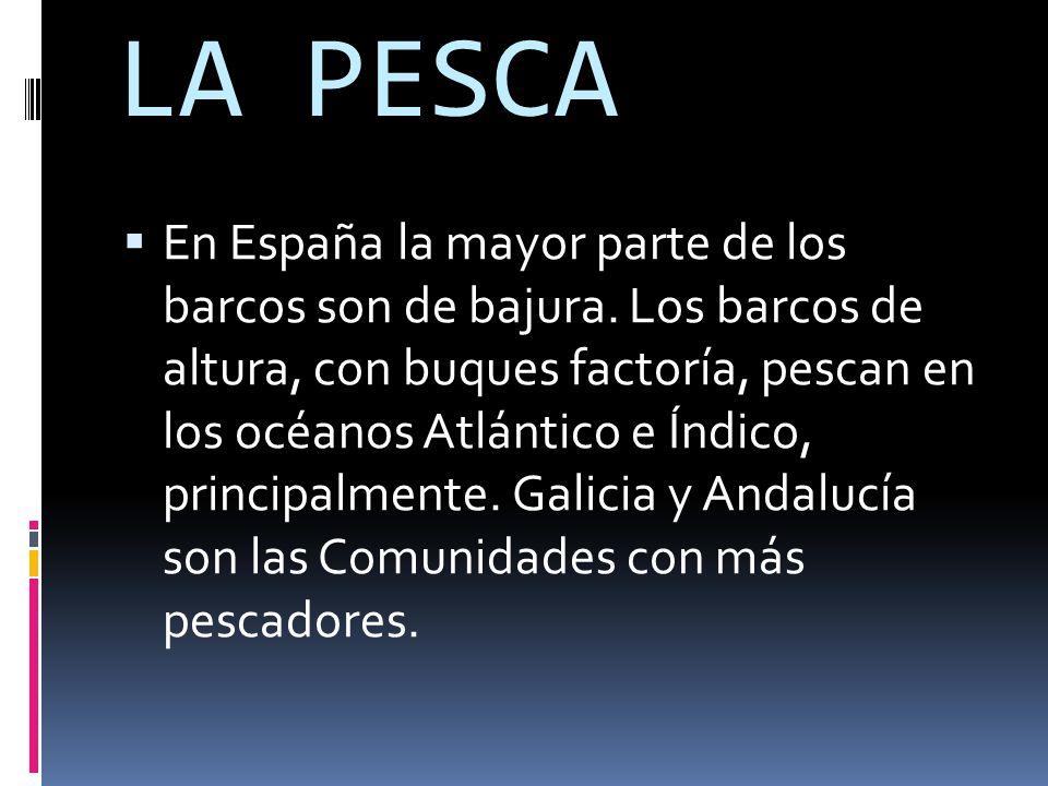 LA PESCA  En España la mayor parte de los barcos son de bajura.