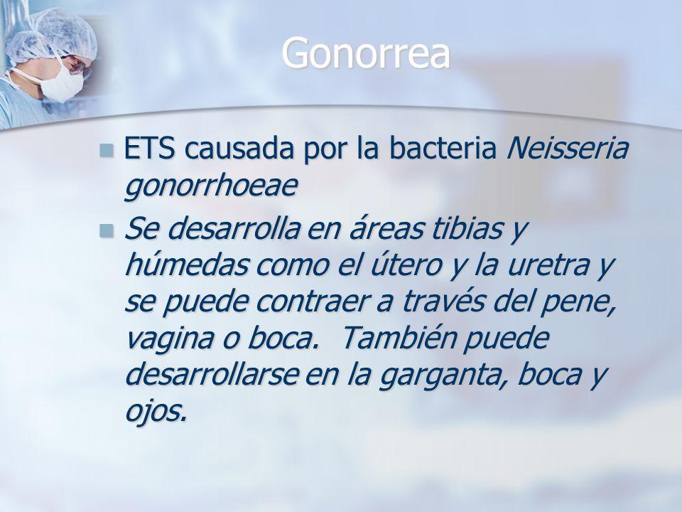 Gonorrea ETS causada por la bacteria Neisseria gonorrhoeae ETS causada por la bacteria Neisseria gonorrhoeae Se desarrolla en áreas tibias y húmedas c