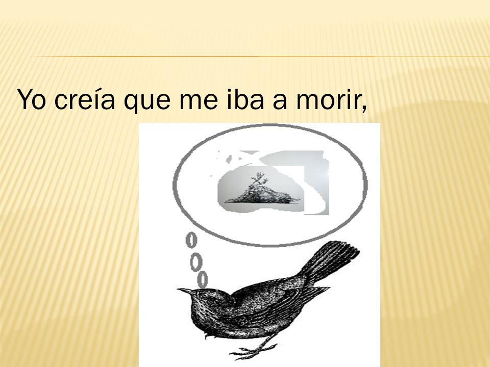 Ni llevar mensajes como las palomas, ni adornar como los cisnes, ni engordar como los pavos.