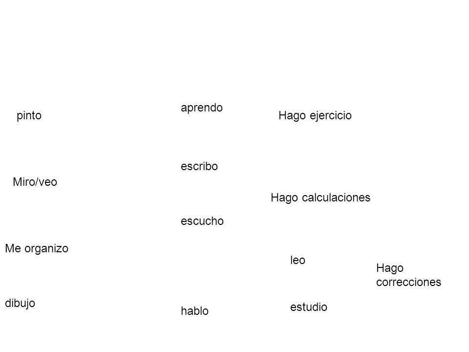 escribo leo Miro/veo Hago calculaciones pinto estudio Hago correcciones Me organizo dibujo aprendo escucho hablo Hago ejercicio