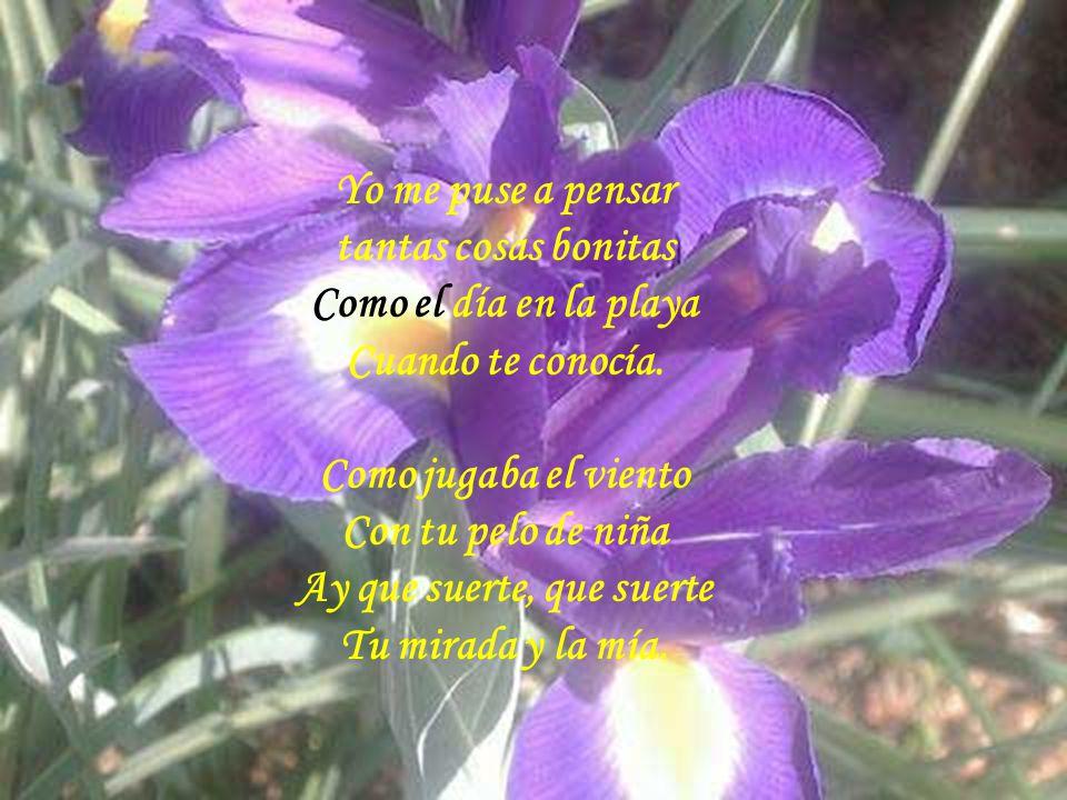 Hoy corte una flor Y llovía y llovía Esperando a mi amor Y llovía y llovía.