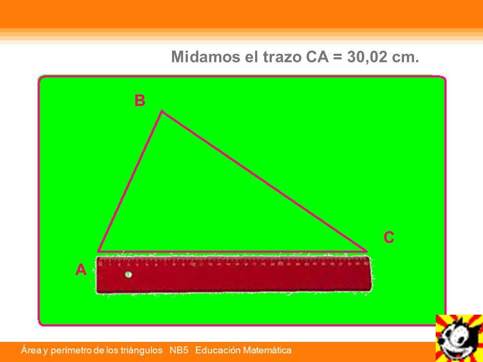C A B Midamos el trazo CA = 30,02 cm.