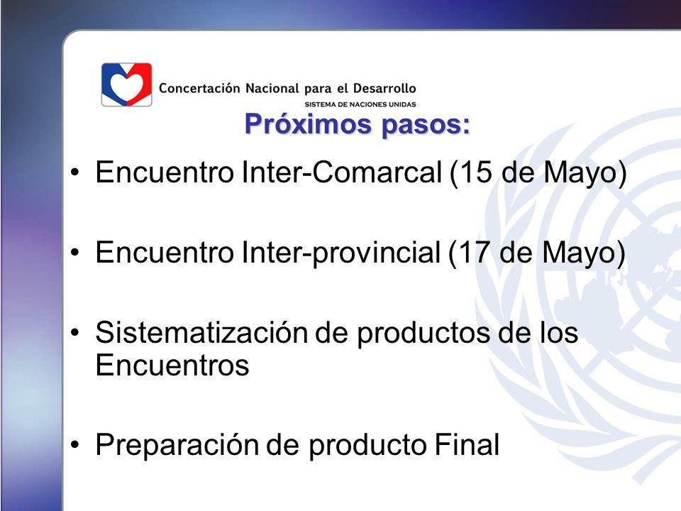 Próximos pasos: Encuentro Inter-Comarcal (15 de Mayo) Encuentro Inter-provincial (17 de Mayo) Sistematización de productos de los Encuentros Preparación de producto Final