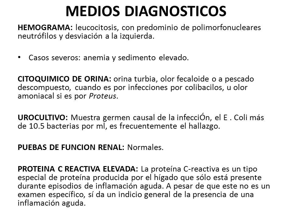 MEDIOS DIAGNOSTICOS HEMOGRAMA: leucocitosis, con predominio de polimorfonucleares neutrófilos y desviación a la izquierda. Casos severos: anemia y sed