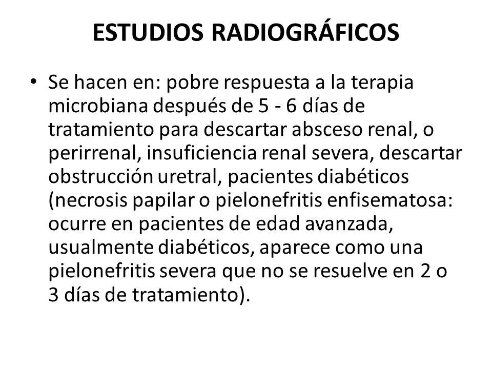 ESTUDIOS RADIOGRÁFICOS Se hacen en: pobre respuesta a la terapia microbiana después de 5 - 6 días de tratamiento para descartar absceso renal, o perir