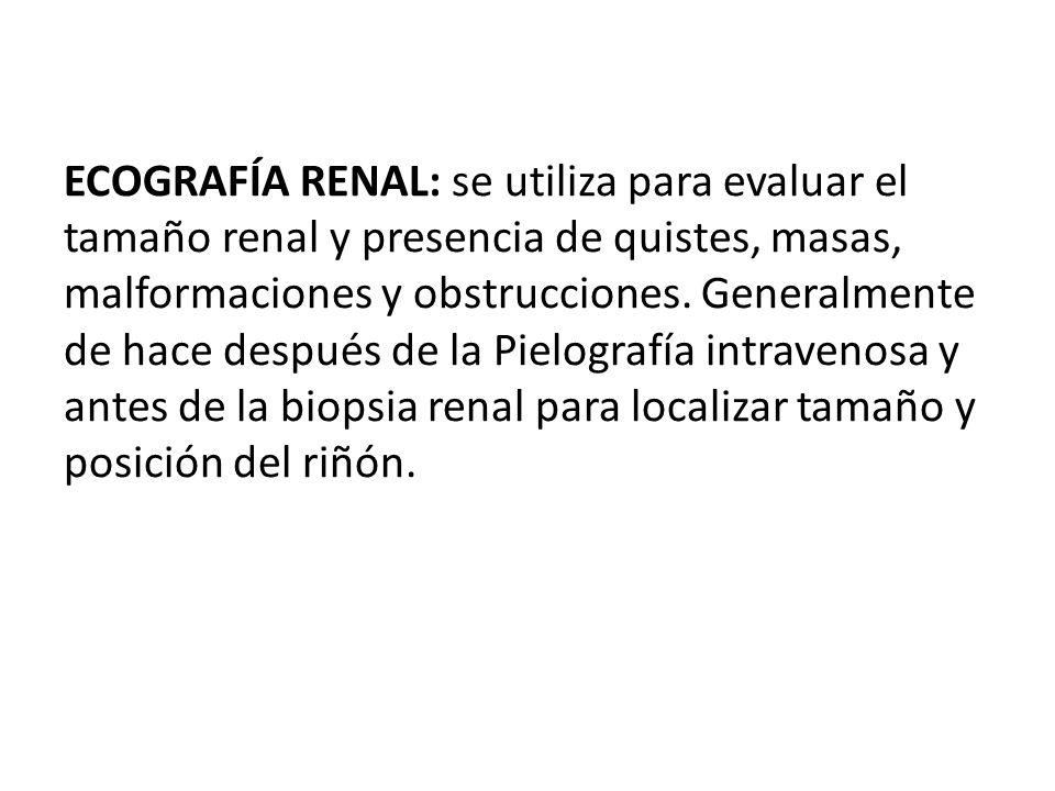 ECOGRAFÍA RENAL: se utiliza para evaluar el tamaño renal y presencia de quistes, masas, malformaciones y obstrucciones. Generalmente de hace después d