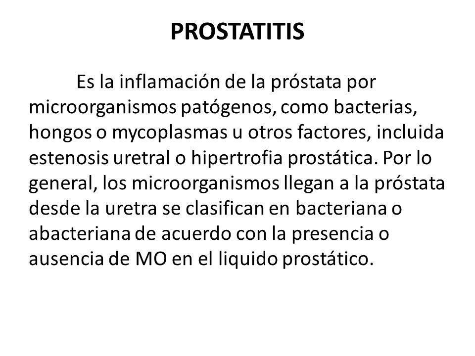PROSTATITIS Es la inflamación de la próstata por microorganismos patógenos, como bacterias, hongos o mycoplasmas u otros factores, incluida estenosis
