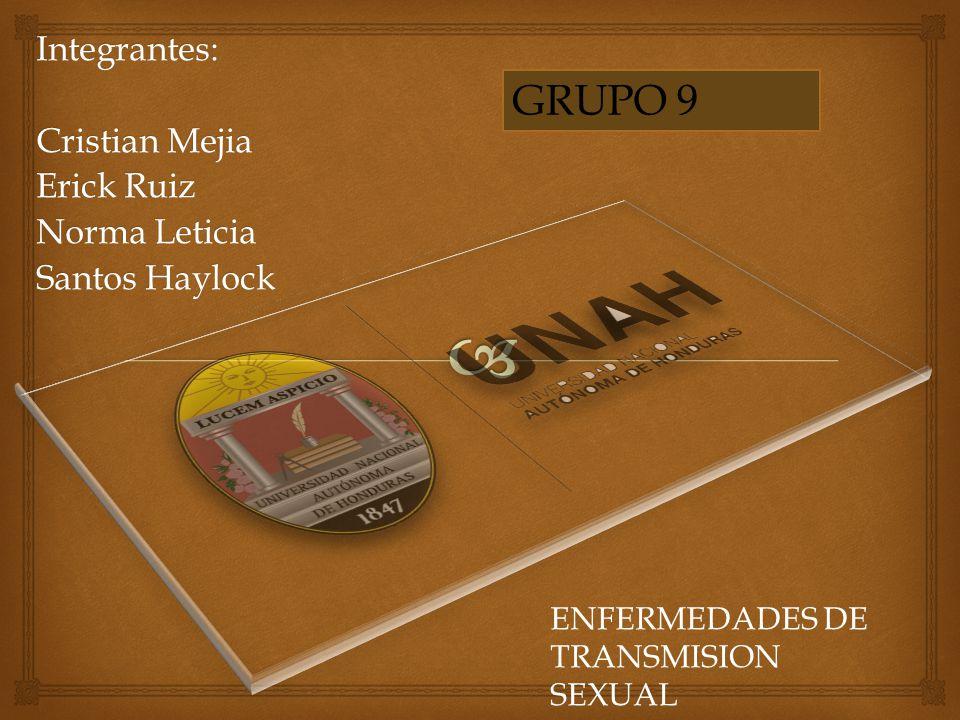Integrantes: Cristian Mejia Erick Ruiz Norma Leticia Santos Haylock ENFERMEDADES DE TRANSMISION SEXUAL GRUPO 9