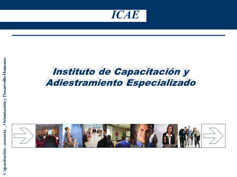 Instituto de Capacitación y Adiestramiento Especializado Capacitación, asesoria, Orientación y Desarrollo Humano ICAE