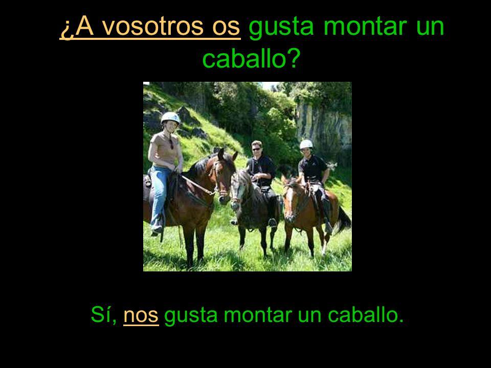 ¿A vosotros os gusta montar un caballo? Sí, nos gusta montar un caballo.