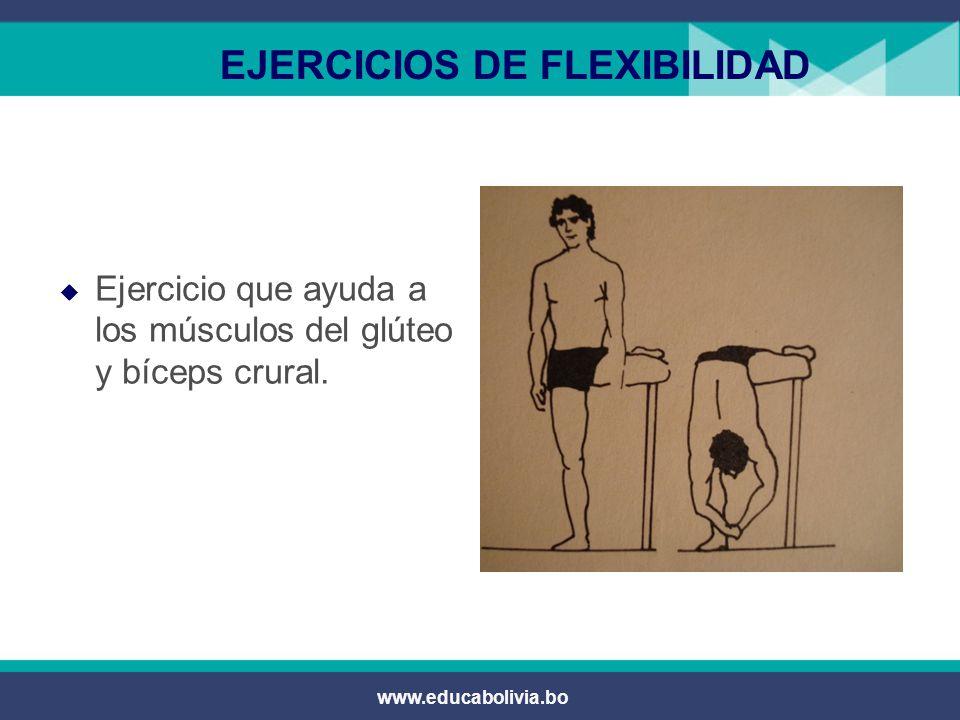 www.educabolivia.bo EJERCICIOS DE FLEXIBILIDAD  Por parejas:  El uno empuja sin rebotar y lastimar a su compañero de la cintura baja.