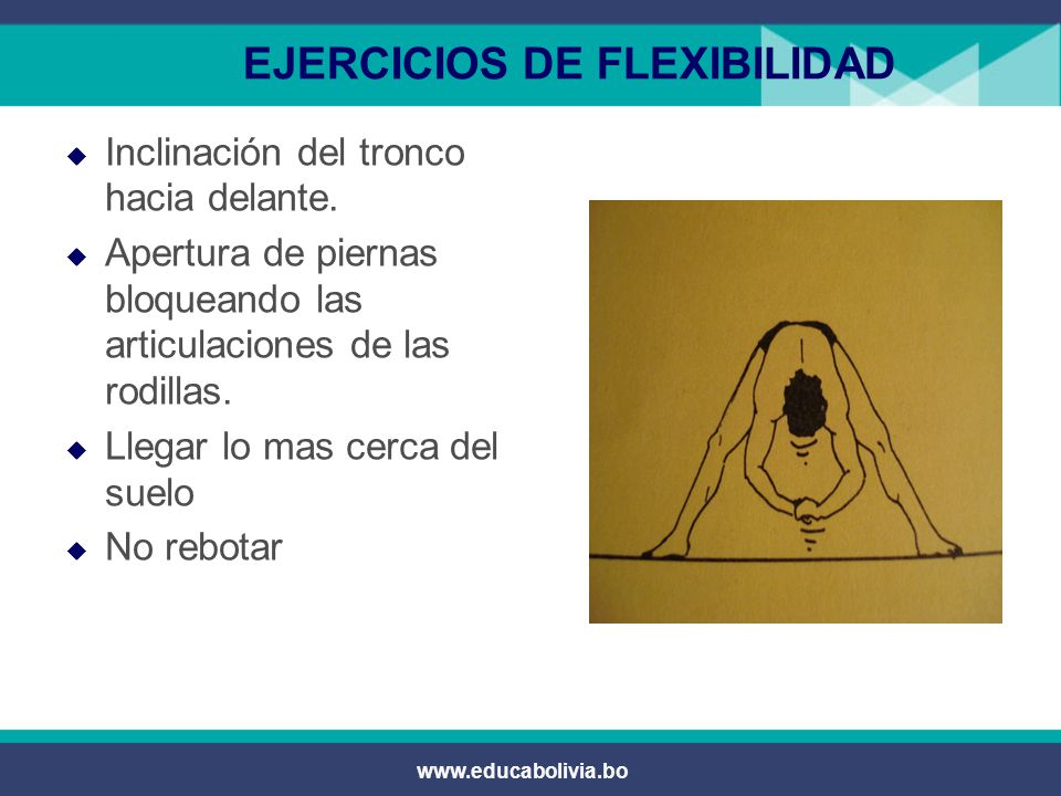 www.educabolivia.bo EJERCICIOS DE FLEXIBILIDAD  Inclinación del tronco hacia delante.