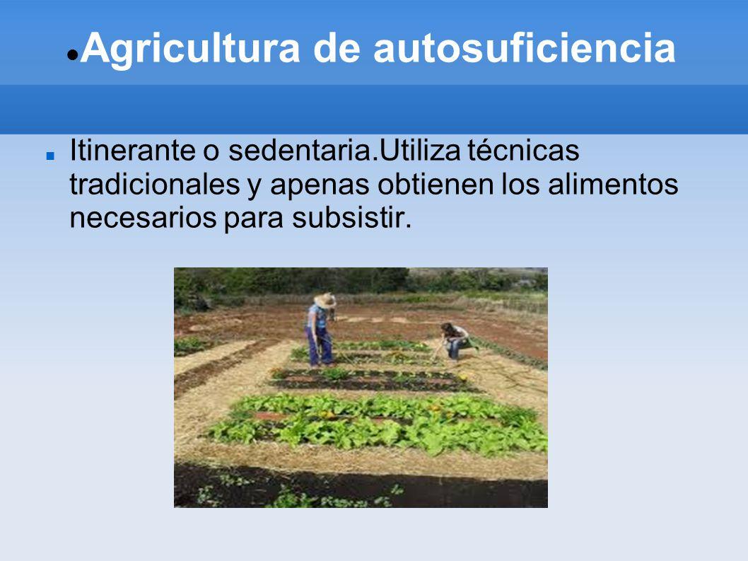 Agricultura de autosuficiencia Itinerante o sedentaria.Utiliza técnicas tradicionales y apenas obtienen los alimentos necesarios para subsistir.