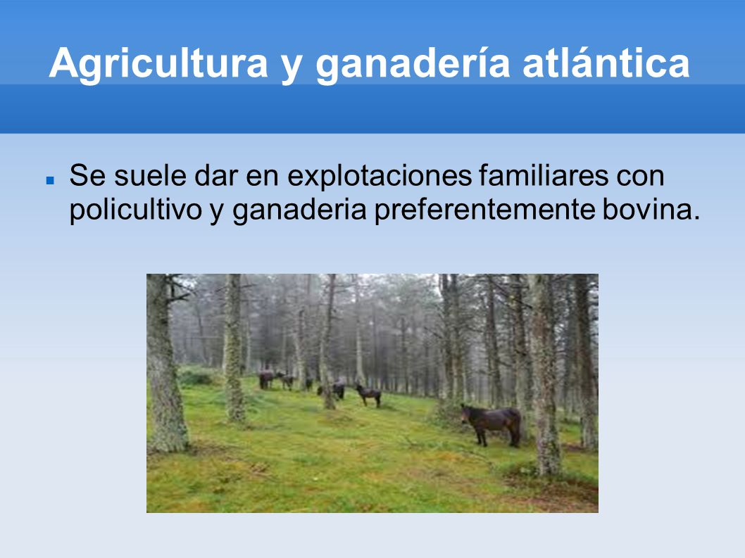 Agricultura y ganadería atlántica Se suele dar en explotaciones familiares con policultivo y ganaderia preferentemente bovina.