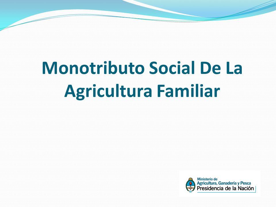 Monotributo Social De La Agricultura Familiar