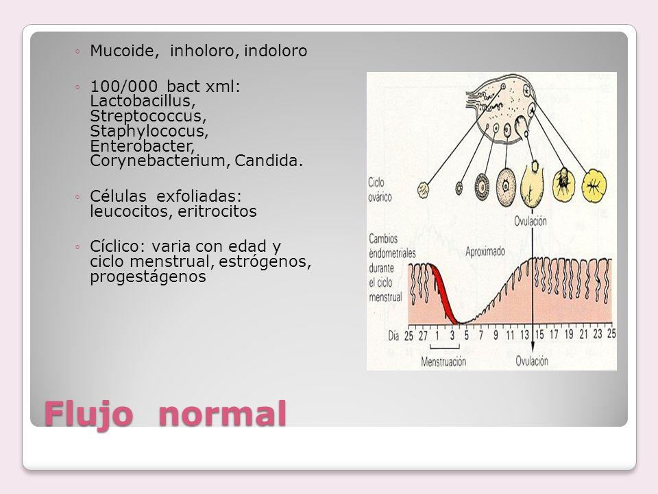 Flujo normal ◦Mucoide, inholoro, indoloro ◦100/000 bact xml: Lactobacillus, Streptococcus, Staphylococus, Enterobacter, Corynebacterium, Candida. ◦Cél