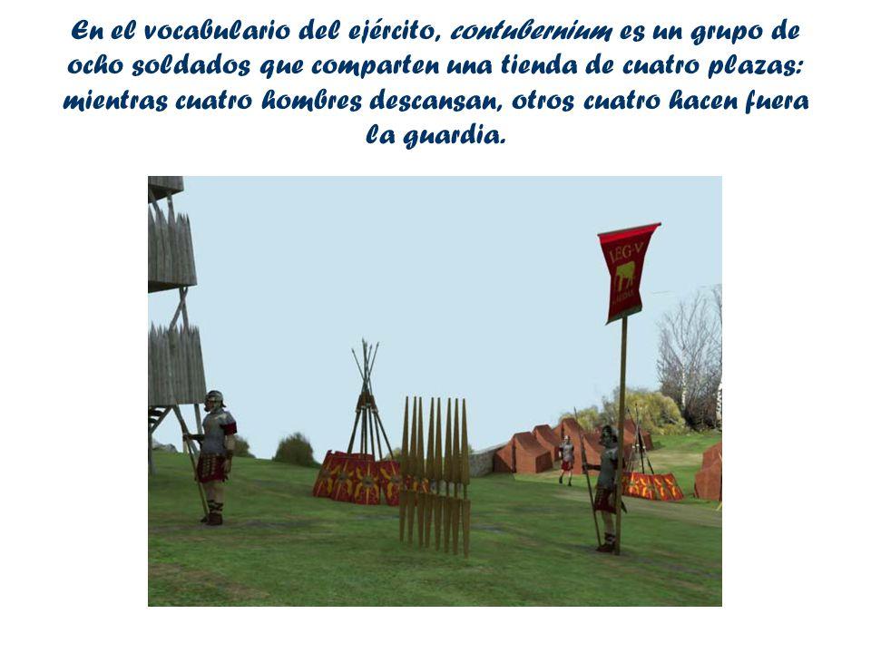 En el vocabulario del ejército, contubernium es un grupo de ocho soldados que comparten una tienda de cuatro plazas: mientras cuatro hombres descansan, otros cuatro hacen fuera la guardia.