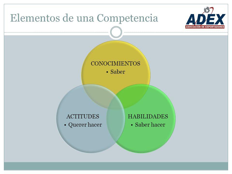 Elementos de una Competencia CONOCIMIENTOS Saber HABILIDADES Saber hacer ACTITUDES Querer hacer
