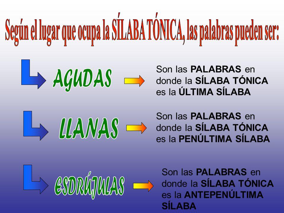 Según el número de sílabas Tienen 1 sola sílaba Pan Tienen más de 3 sílabas ME – LO – CO - TÓN Tienen 3 sílabas É – po - ca Tienen 2 sílabas Lá - piz