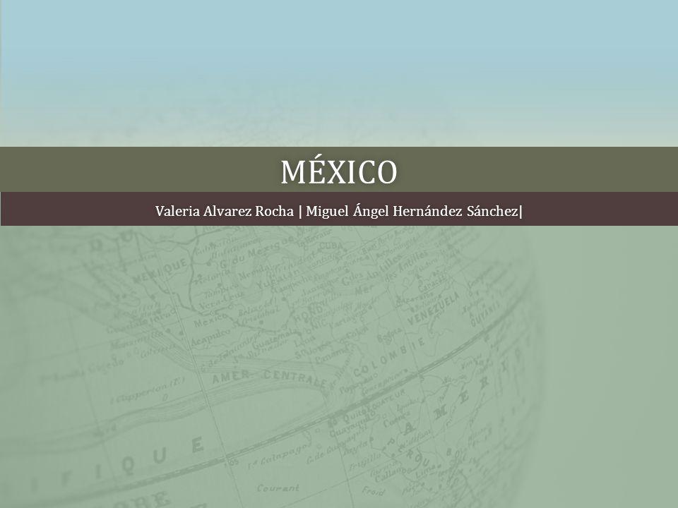 MÉXICO Valeria Alvarez Rocha | Miguel Ángel Hernández Sánchez|Valeria Alvarez Rocha | Miguel Ángel Hernández Sánchez|