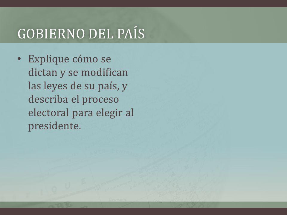 GOBIERNO DEL PAÍSGOBIERNO DEL PAÍS Explique cómo se dictan y se modifican las leyes de su país, y describa el proceso electoral para elegir al presidente.