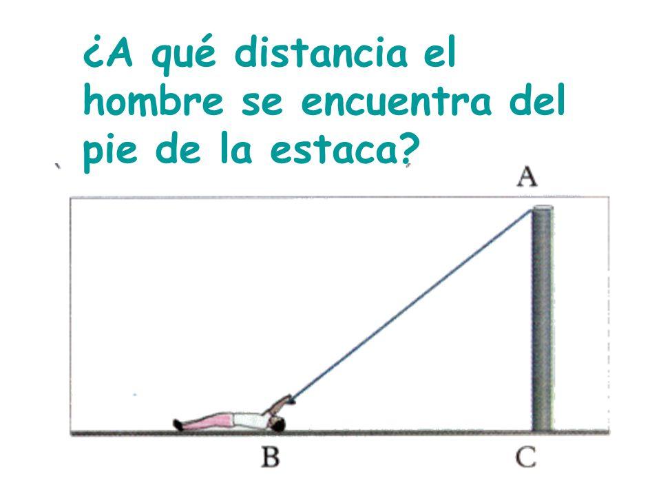 10) Halla la altura del puente, sabiendo que tiene 17 m de largo.