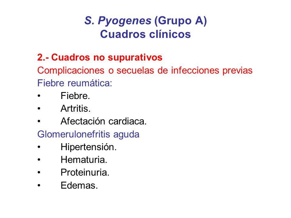 S. Pyogenes (Grupo A) Cuadros clínicos 2.- Cuadros no supurativos Complicaciones o secuelas de infecciones previas Fiebre reumática: Fiebre. Artritis.