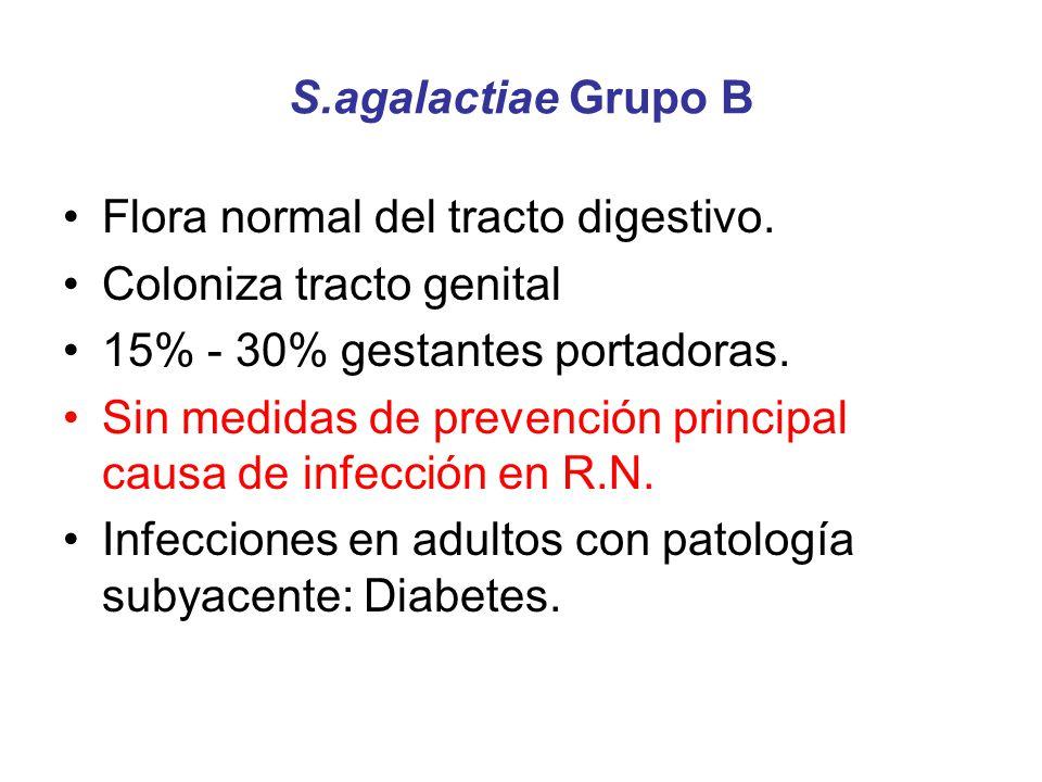 S.agalactiae Grupo B Flora normal del tracto digestivo. Coloniza tracto genital 15% - 30% gestantes portadoras. Sin medidas de prevención principal ca