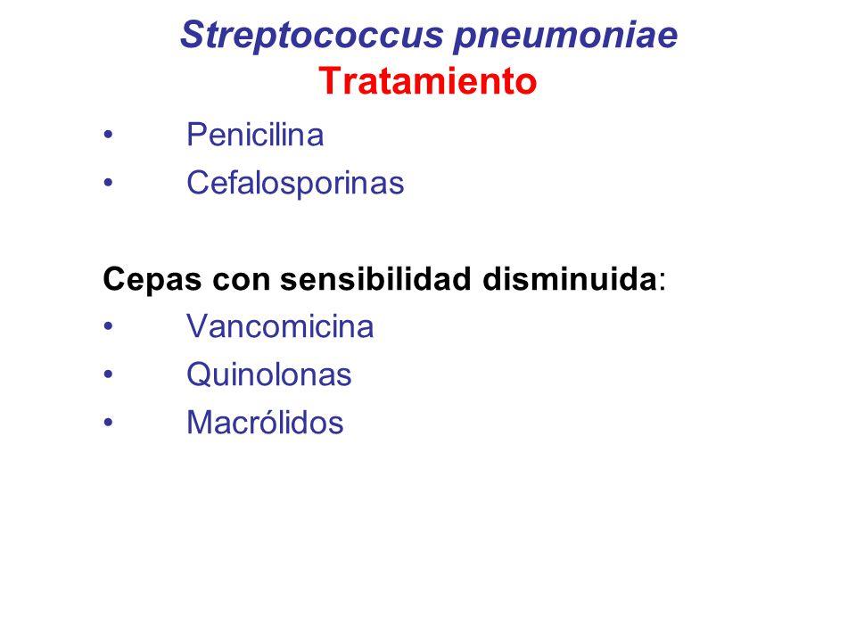 Streptococcus pneumoniae Tratamiento Penicilina Cefalosporinas Cepas con sensibilidad disminuida: Vancomicina Quinolonas Macrólidos