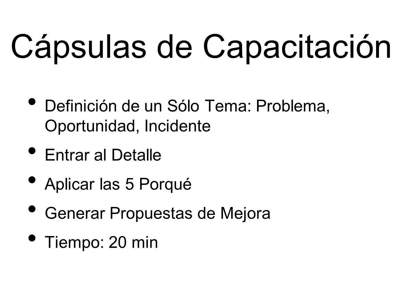 Cápsulas de Capacitación Definición de un Sólo Tema: Problema, Oportunidad, Incidente Entrar al Detalle Aplicar las 5 Porqué Generar Propuestas de Mejora Tiempo: 20 min