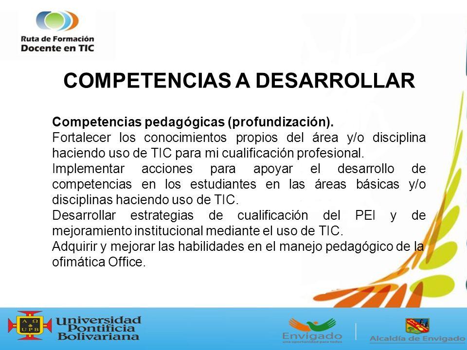 Competencias pedagógicas (profundización).