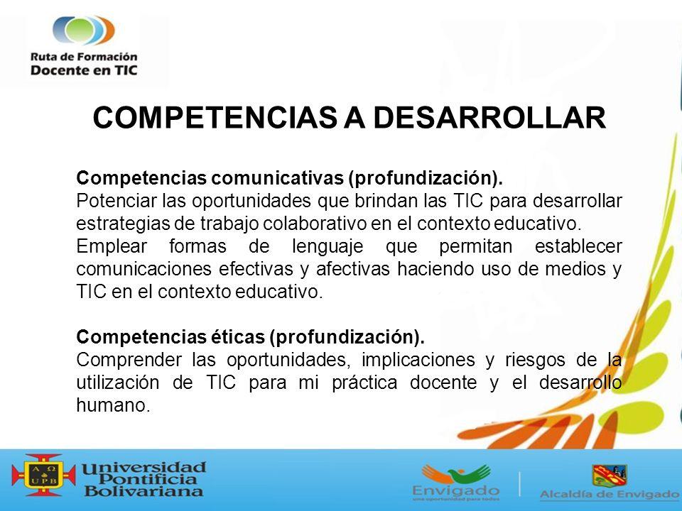 Competencias comunicativas (profundización).