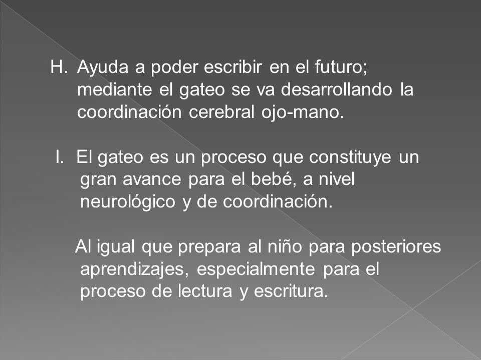 H.Ayuda a poder escribir en el futuro; mediante el gateo se va desarrollando la coordinación cerebral ojo-mano.