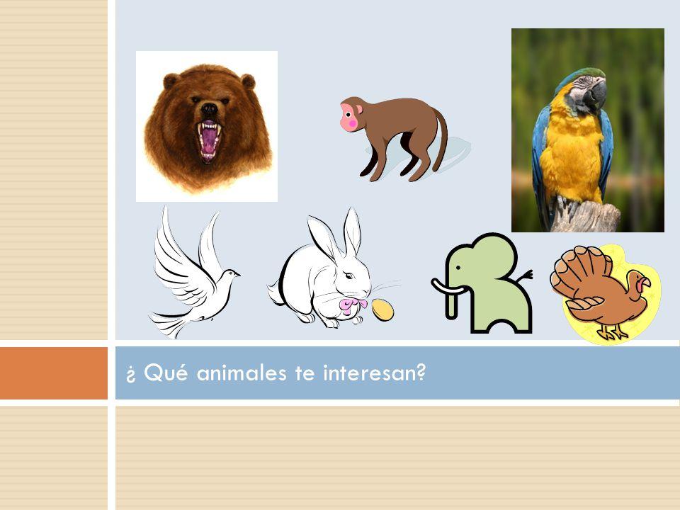 ¿ Qué animales te interesan