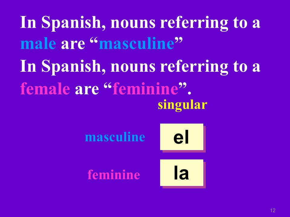 11 In Spanish, nouns have gender.