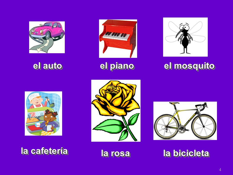 Noun: person, place, thing, idea In Spanish, nouns have gender  Masculine Nouns  Feminine Nouns In Spanish, nouns have number  Singular Nouns  Plural Nouns Noun: person, place, thing, idea In Spanish, nouns have gender  Masculine Nouns  Feminine Nouns In Spanish, nouns have number  Singular Nouns  Plural Nouns